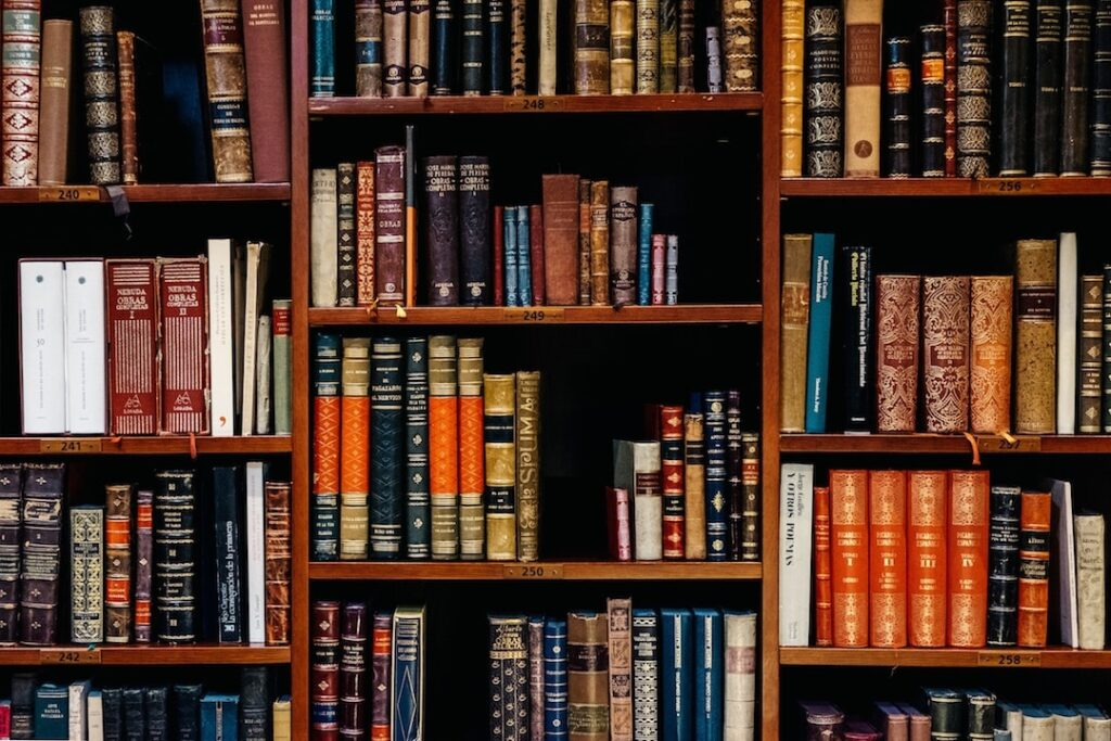 A crowded bookshelf