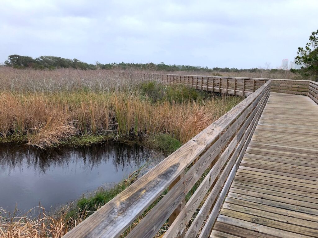 View down a secluded boardwalk across a wetland in Gulf Shores, Alabamba