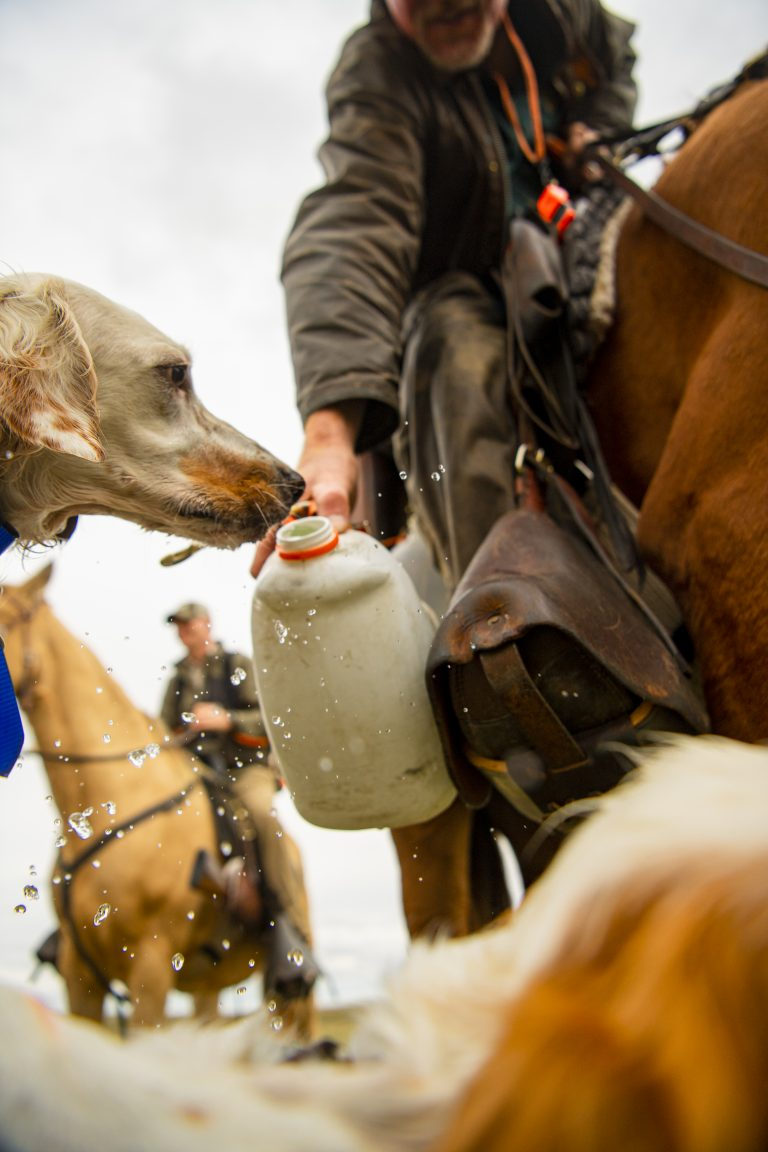 A man on horseback holds a water jug out to a dog