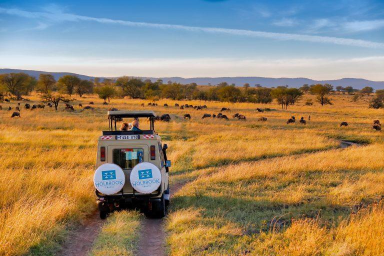 A jeep drives through the Serengeti